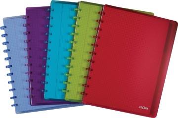 Atoma schrift ft A4 +, geruit 5mm, met 6 tabbladen en 5 showtassen, in geassorteerde kleuren